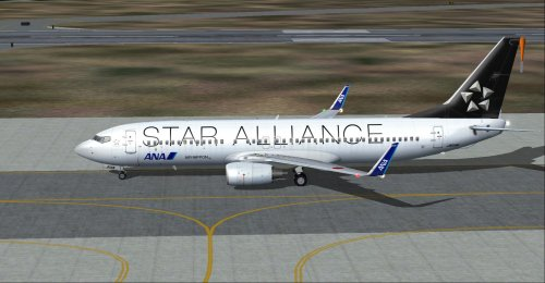 737-881 ANA/Air Nippon STAR ALLIANCE