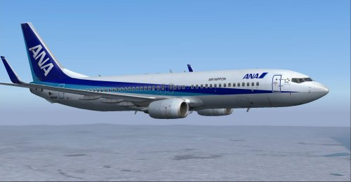 ANA/Air Nippon 737-881 \