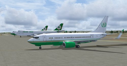 FSX iFly 737-BBJ N888YF Evergreen Group