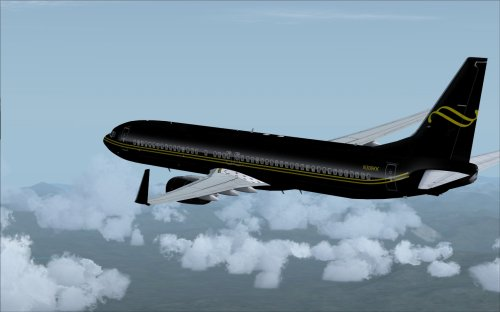 FS9 BBJ3 Black and Gold US