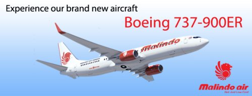 New Malindo Air FSX. Converted from FS9 texture